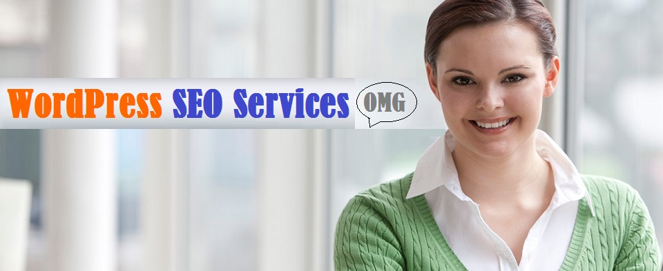 WordPress SEO Services Company in Delhi NCR India